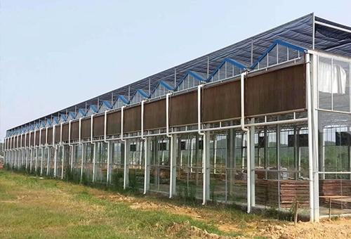 温室大棚湿帘风机工程